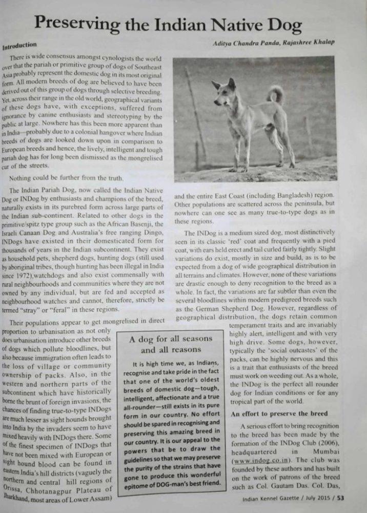 Preserving Indian Native Dog - Kennel Gazette KCI