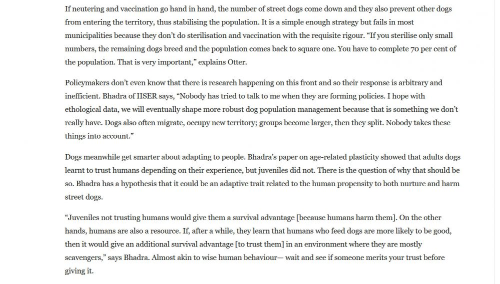 The Secret Lives of Indian Street Dogs